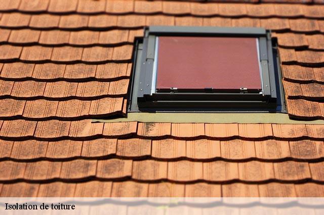 Isolation de toiture 69 Rhône tél: 04.82.29.16.58