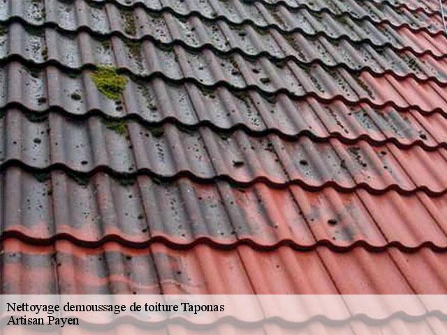 Nettoyage et demoussage de toit Taponas tél: 04.82.29.16.58