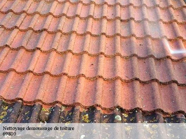 Nettoyage et demoussage de toit Saint Priest tél: 04.82.29.16.58